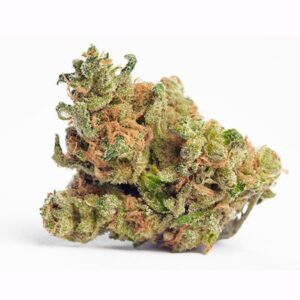 G13 Haze Sativa Weed Strain